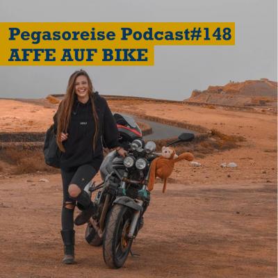 pp148 - Affe auf Bike